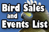 The best bird sales and events list!